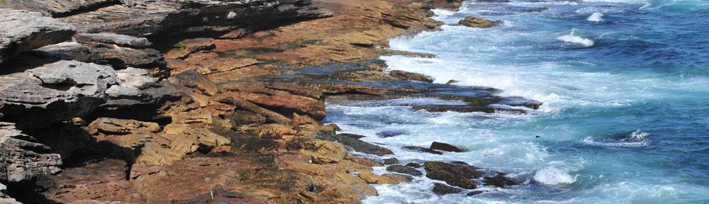 Weichert Realtors Best Beach RE